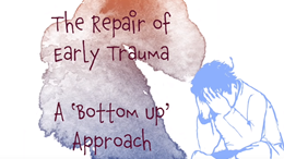 The repair of early trauma: a bottom up approach - animation