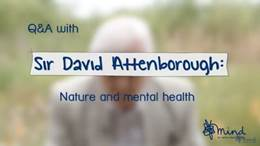 Mental health and nature video